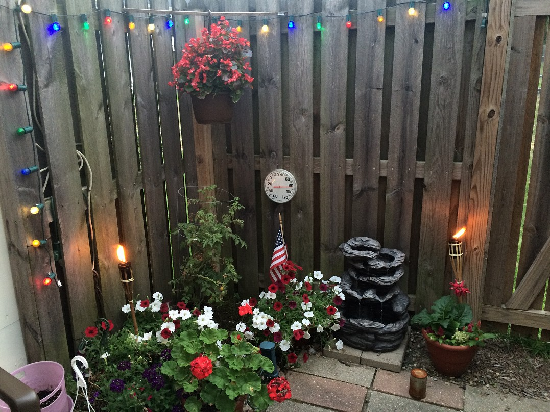 Patio Flowers Aug 7 2016